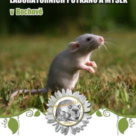 plakat_vystavy_bochov_3