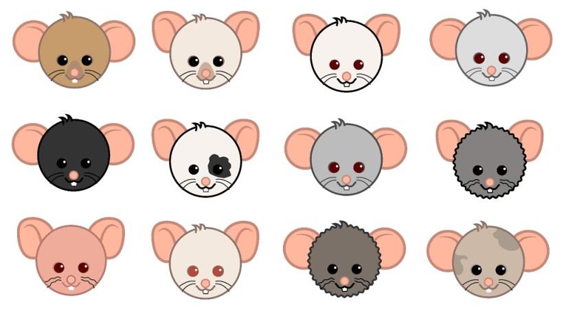 potkanihlavy