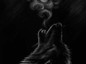 vlk-2